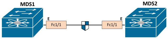 fcsp-dhchap-topology